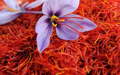 Negotiated Pricing for Saffron on Iran Mercantile Exchange